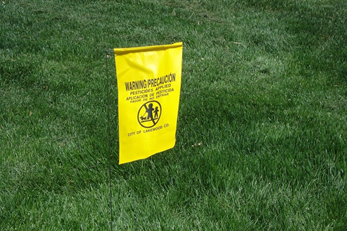 A City of Lakewood pesticide notification flag rests on grass.