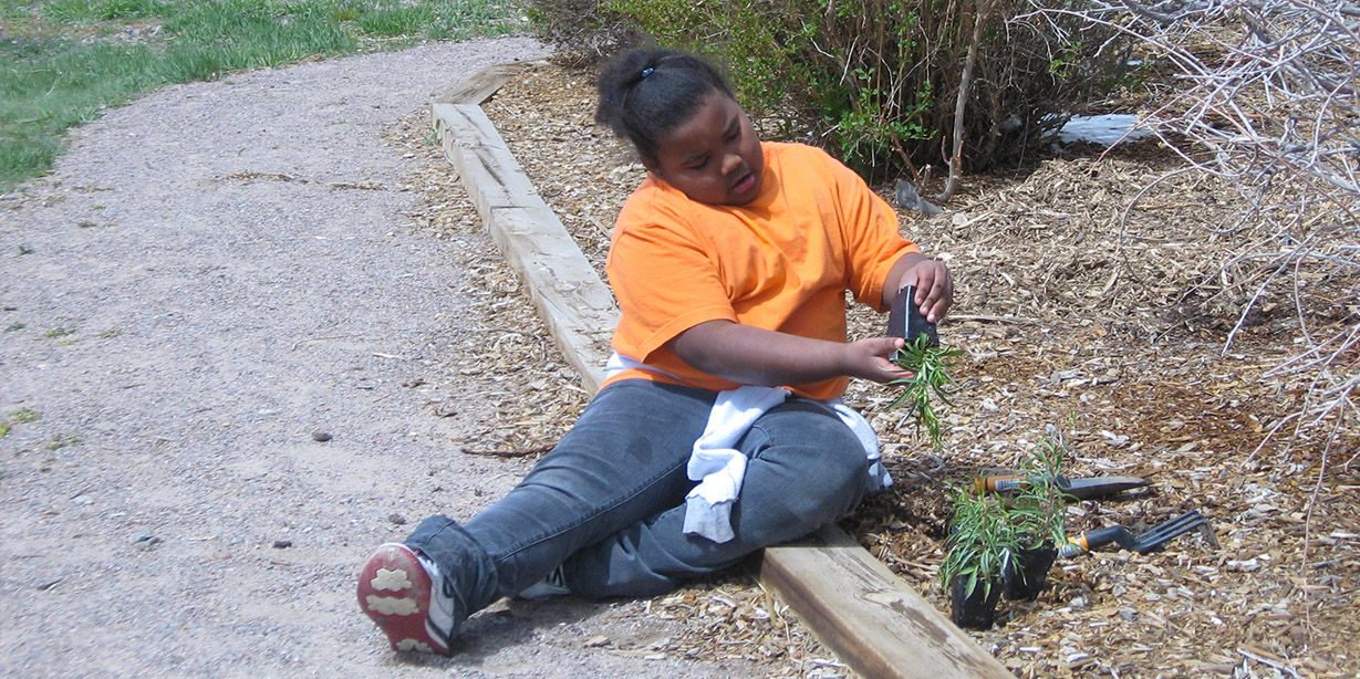 A volunteer plants during Earth Day.