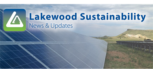 Sustainability News and Updates with Solar Panels.png