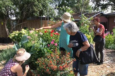 Sustainable Neighborhoods Gardening