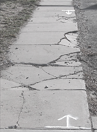 A cracked sidewalk marked for repair.
